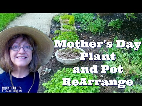 Mother's Day Mom & Daughter Planting/Moving/Fun