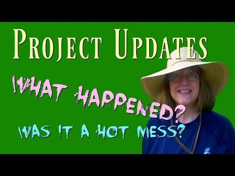 Project Updates - How did they all turn out?