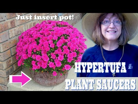 Need Plant Saucers? Make A Pair With Hypertufa!