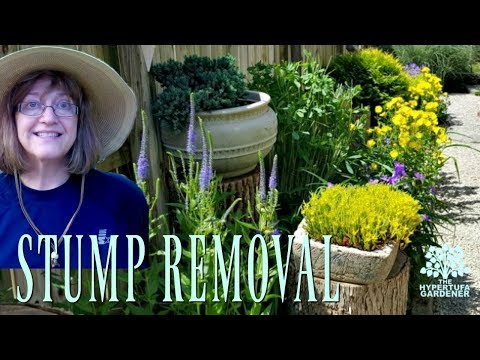 Stump Removal! Just Don't Put Them in the Garden in the First Place!