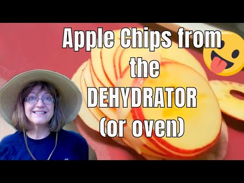 Fruits Dried in a Dehydrator - Family Crashes My Video!