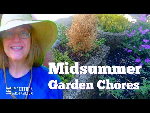Just A Few Midsummer #GardenChores - Join Me!