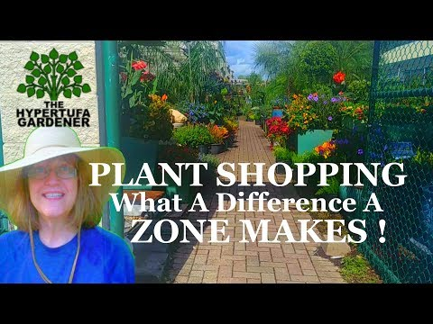 A Different Zone! Wow, Plant Shopping is Fun in a New Zone!