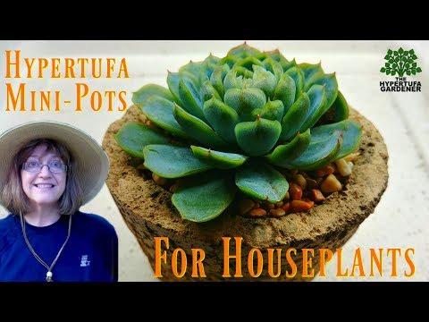 Hypertufa Mini Pots For House Plants & Small Succulents
