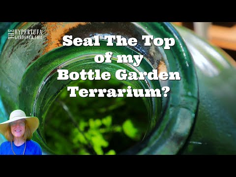 Go For The Sealed Bottle Terrarium? Is That My Only Option? I Love My Bottle Garden...Cork It?