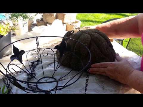 Hanging Hypertufa Baskets - I Tried It & It Works! Part Two from The Hypertufa Gardener