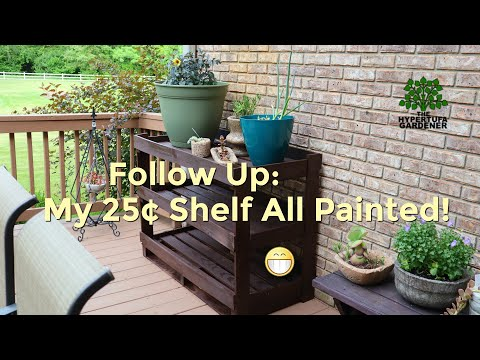 How Did The 25¢ Plant Shelves Turn Out Painted? Totally Awesome! 😃😍