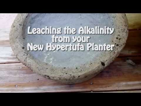 Leaching the Alkalinity from Your New Hypertufa Planter