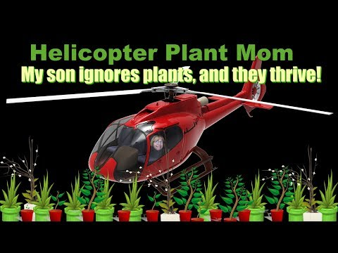 Helicopter Plant Mom - Stop Hovering & Cactus Will Bloom!