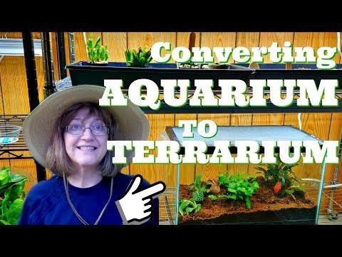 An Old Aquarium into A Terrarium - Converting Aquarium to Terrarium