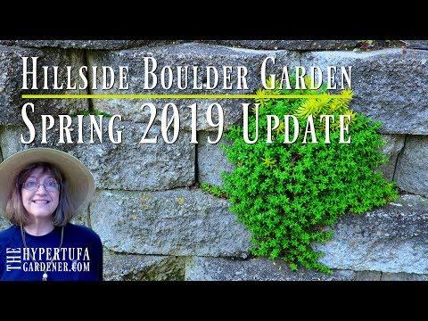 Hillside Boulder Garden Tour - How Has It Grown for 2019?