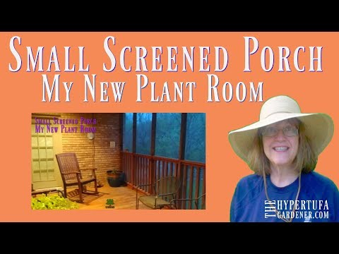 I've Found A New Plant Room - My Screened Porch - Bring On More Plant Hauls!