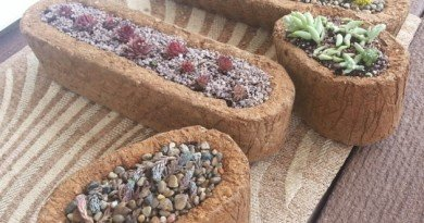 hypertufa pots ready - the hypertufa gardener