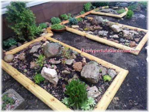 image of rock garden Sedum Beds
