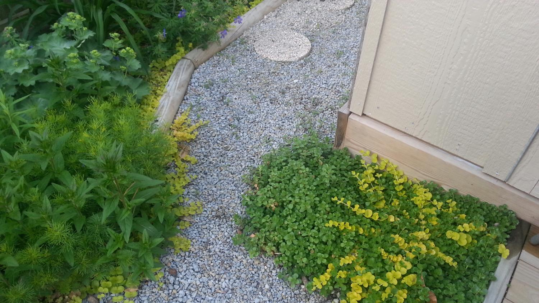 Path by My Garden Shed - The Hypertufa Gardener
