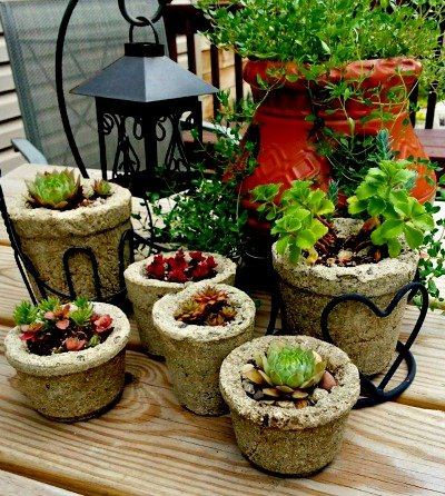 small-hypertufa-planters