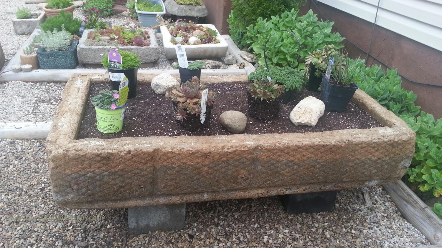 photo of the hypertufa gardener Giant Trough for Hooked on Hypertufa