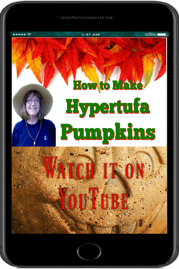 video on how to make Hypertufa pumpkins on YouTube