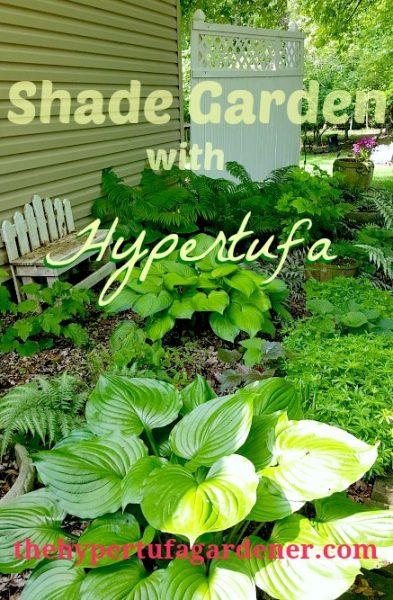 Shade Garden and my hypertufa shade trough & bowls