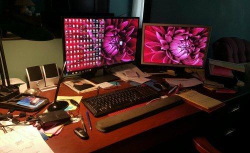 dual monitors used by hypertufa gardener to edit videos