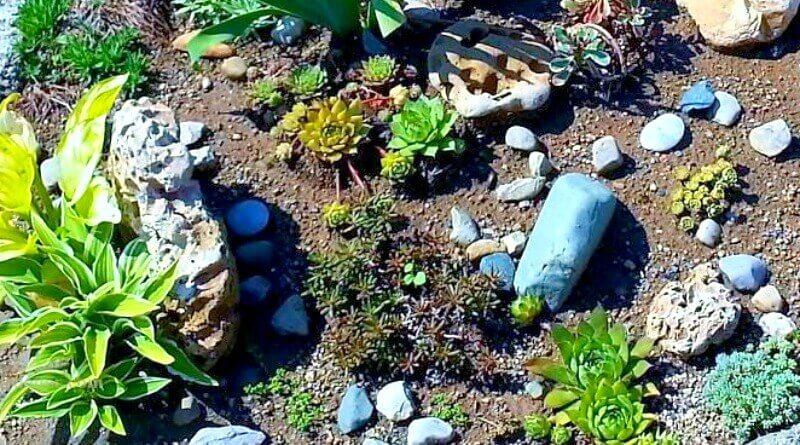 Rock Garden Hypertufa Trough