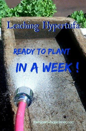 Leaching My New Hypertufa Pot - Fast