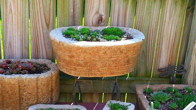 Collection of Troughs - The Hypertufa Gardener