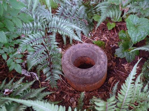 Extra Ring Pedestal