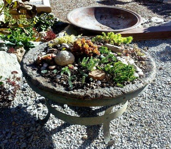 Planted-Fire-Pit-Hypertufa-Gardener
