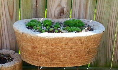 Wine Barrel Tufa Pot - The Hypertufa Gardener
