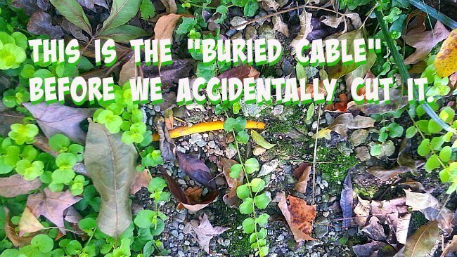This is the old buried cable - The Hypertufa Gardener