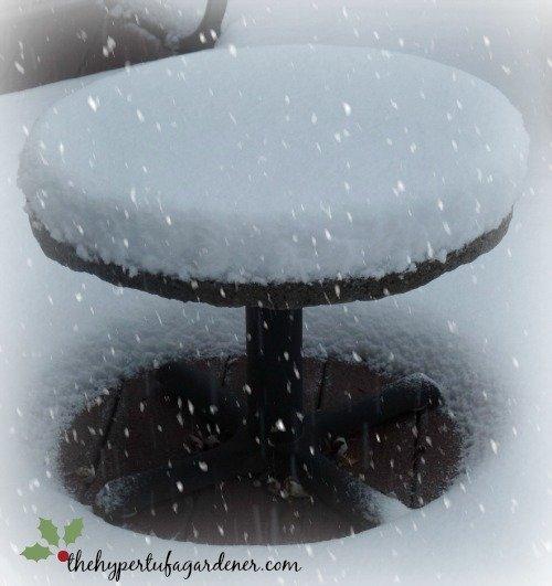 My hypertufa table - from The Hypertufa Gardener