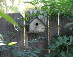 bird-houseTheHypertufaGardener