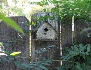 bird-houseTheHypertufaGardener