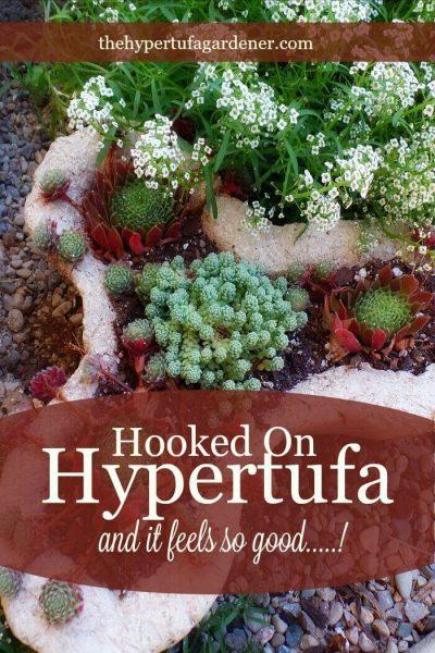 Hooked on Hypertufa from The Hypertufa Gardener.com(1)(1)
