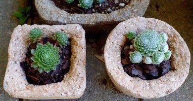 Three Hypertufa for Hooked on Hypertufa - The Hypertufa Gardener.com(1)