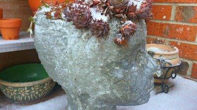 Head-Vase-Hypertufa-Gardener2