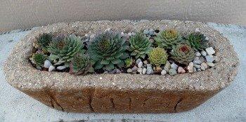 Some Favorite Hypertufa Pots - The Hypertufa Gardener