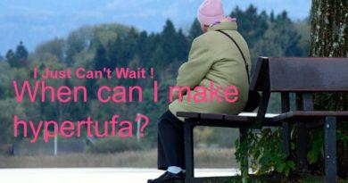 I Just Can't Wait…I Must Make Hypertufa!