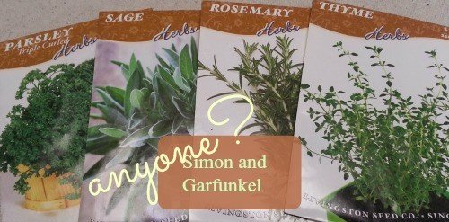 Seedpackages-hypertufa-gardener
