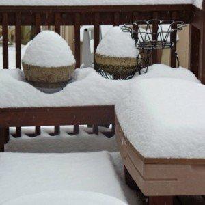SnowisDeep-Bird-Feeder-Winter-hypertufa-gardner
