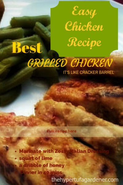 Awesome Grilled Chicken - The Hypertufa Gardener