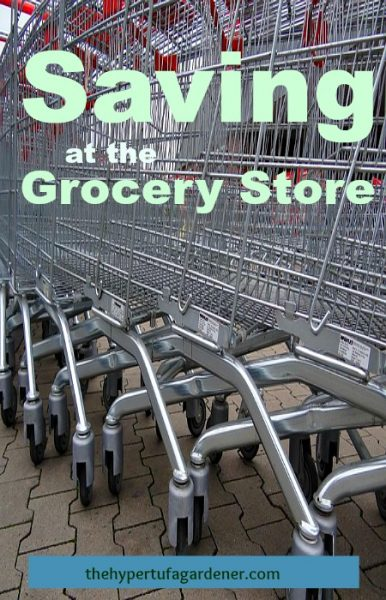 Hate Grocery Shopping - The Hypertufa Gardener