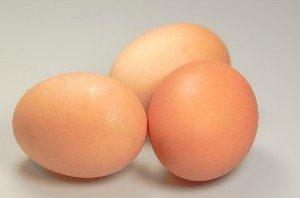 eggs-hypertufa-gardener