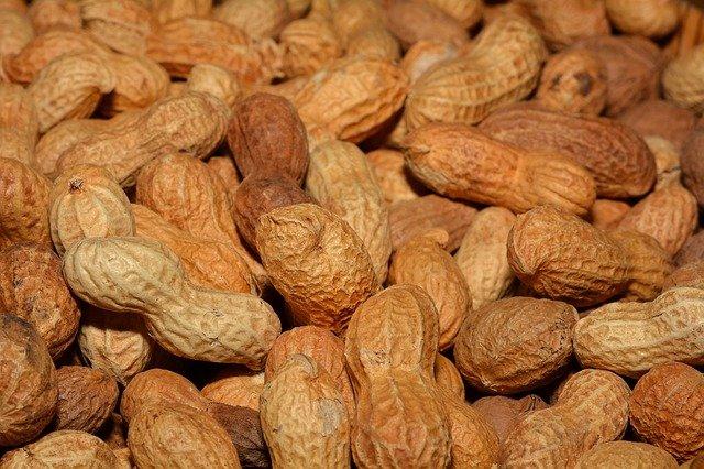 peanut-shells-hypertufa-gardener