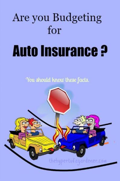 Budgeting-auto-insurance-hypertufa-gardener