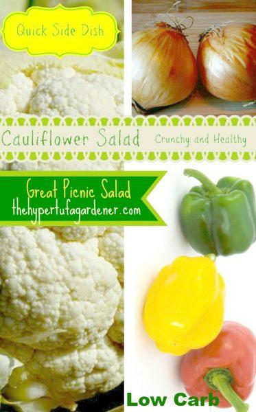 Raw cauliflower salad - The Hypertufa Gardener.com