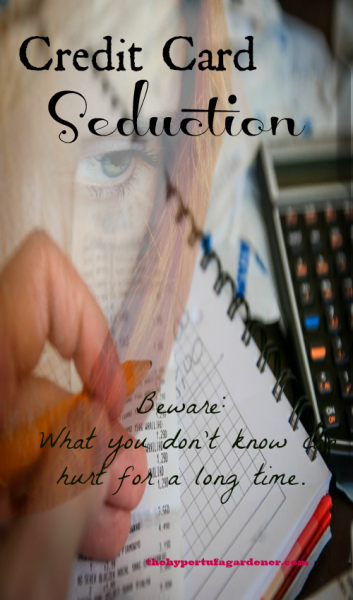 Credit Card Seduction 3 - The Hypertufa Gardener.com