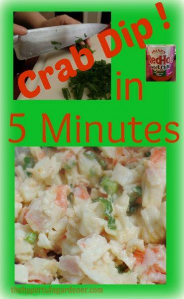 Easy 5 minute crab dip - thehypertufagardener.com