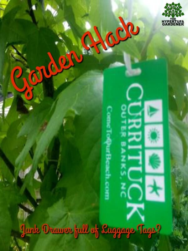 Garden Hack for Luggage Tags